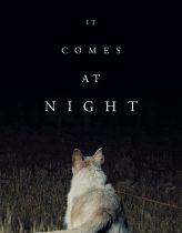 Gece Gelen – It Comes at Night 2017 izle