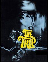 Trip Filmi izle